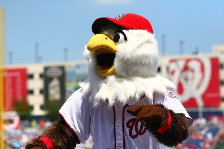 Screech the Eagle Enters Free Agency After Baby Shark Steals Thunder